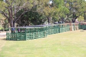 Animal stations at Agrofest