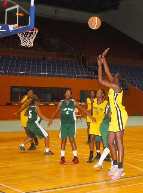 Melissa Goodman (right) of Hoopsters takes an open shot at the basket.