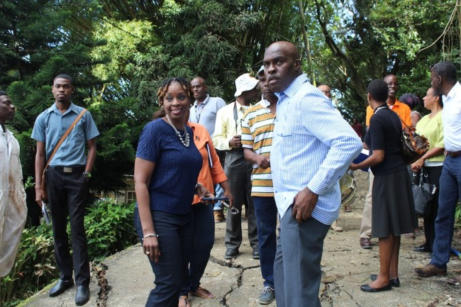 Democratic Labour Party candidate for St Andrew Senator Irene Sandiford-Garner and Minister of Transport and Works Michael Lashley at White Hill today.