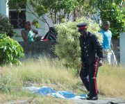 Update: Suspect shot at Rockhall, St Philip